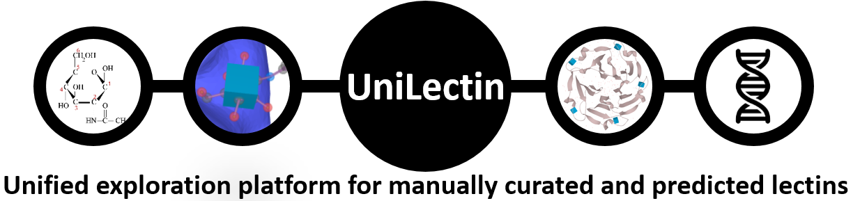 UniLectin exploration platform and database for curated and predicted lectin carbohydrate binding proteins